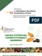 circuito del cacao.pdf