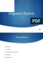 Lecture-Chapter-06-Digestive-System