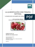 184561508-1-Fruta-Granada-en-el-Tratamiento-del-Cancer-de-Prostata.pdf