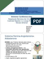 s. cardiovascular2