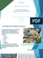 contaminacion por metales pesados 2.pptx