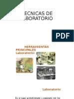 TECNICAS DE LABORATORIO.pptx