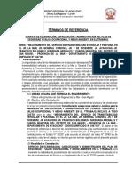 SERVICIO DE CAPACITACION EN PROGRAMA pistas y veredas