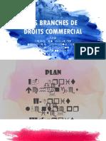 Les Branche de Droits Commerçail