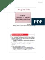 estrutura e funçoes dos acidos nucleicos aula 2