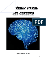 El_codigo_visual_del_cerebro