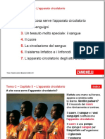apparato circolatorio.pdf