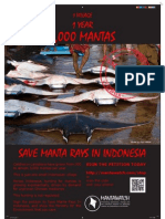 Save Manta Rays in Indonesia