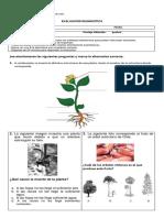 evaluacion diagnostica ciencias 3