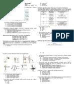 326858173-Preguntas-Icfes-Metodos-de-Separacion-de-Mezclas-Para-Analizar