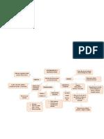 organizdores graficos actividad 1.4.docx
