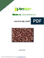 1_cultivo_del_cafe