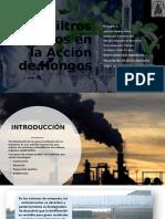 Biofiltros Basados en la Acción de Hongos