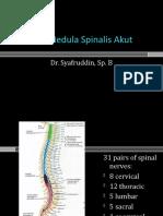 Lesi Medula Spinalis Akut