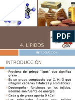 4 LIPIDOS.pptx