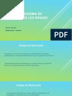 ANALISIS DEL SISTEMA DE PROPULSION DE LOS BUQUES.pptx