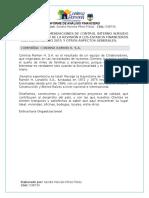 Informe_Financiero_CONINSA_RAMON_H._Sandra_Marcela_Pérez_Cód_538730 (1)