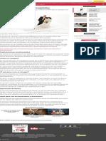 Tips para los acuerdos prenupciales _ IDC