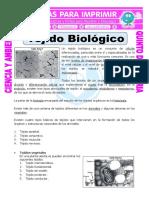 Ficha-Tejido-Biologico-para-Quinto-de-Primaria