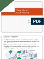 Cellular Network