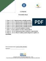 CRED_G_33_Componenta_portofoliu