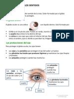 LOS-SENTIDOS UNIDAD 4 NATURALES 3 PRIMARIA (2).pdf