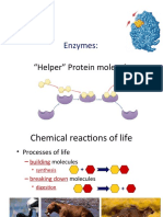 le_ch._6.2_enzymes.ppt