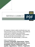 sistema_limbico_pp_2