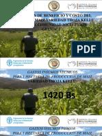 visita guiada rendimientos maiz revisado.pdf