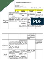 informe tecnico  IB 2019.docx