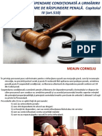 drept procesual penal