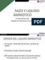 Ginecología- Trastornos de Líquido Amniótico
