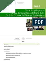 07-Texto-dirigido-Perfil-PERSONAL-DEL-SISTEMA-PENITENCIARIO