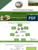 Situación de la ganadería en Paraguay