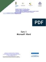 Curs 1 - Microsoft Word