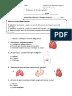 evaluacion1cuerposhumano-1.pdf