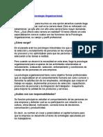 Funciones de La Psicología Organizacional