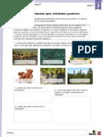 Guía 5° CVDCH