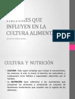 6FACTORES QUE INFLUYEN EN LA CULTURA ALIMENTARIA (1)
