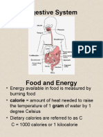 Digestive_systemand_Excretory_System.ppt