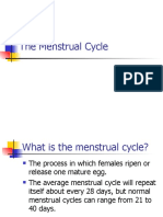 Mestrual cycle ppt