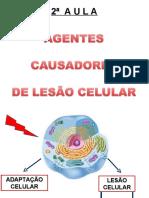 2ª AULA - AGENTES CAUSADORES DE LESÃO CELULAR (1)