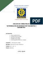 INFORME DE  DENSIDAD DE COMBUSTIBLE