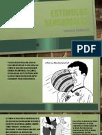 Estímulos Sensoriales.pptx