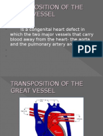 Transposition of the Great Vessel