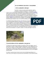 CARACTERISTICAS DE LOS ANIMALES SALVAJES Y CON GARRAS
