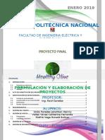 Actualizado Doc Formulación PROYECTO (1)