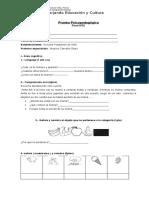 prueba  transicion psicopedagogica