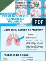 Rotafolio Del Cancer de Pulmon