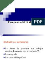 NORMA_APA...